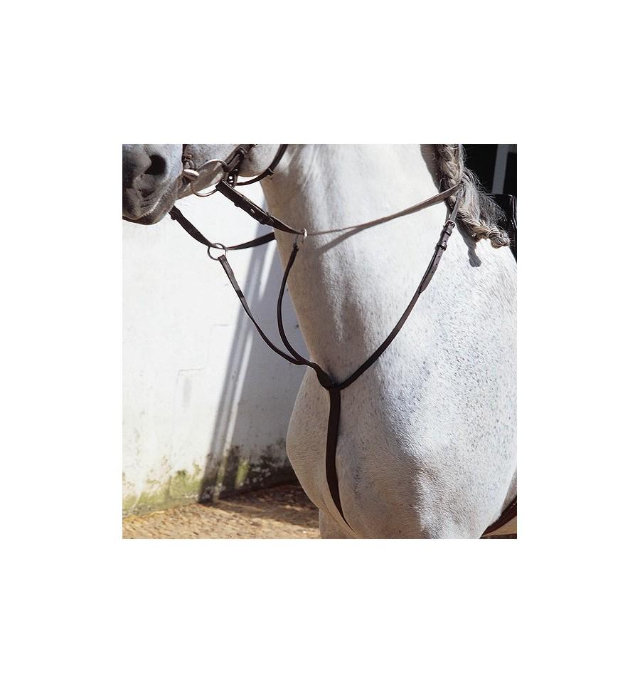 Martingala para caballos