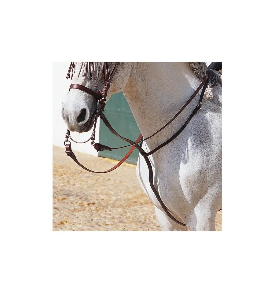 Gamarra para caballos