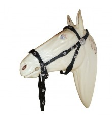 Cortezia Portuguese bridle single reins without bit