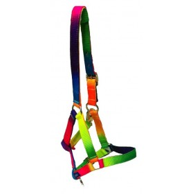 Cabezada de Cuadra para pony multicolor