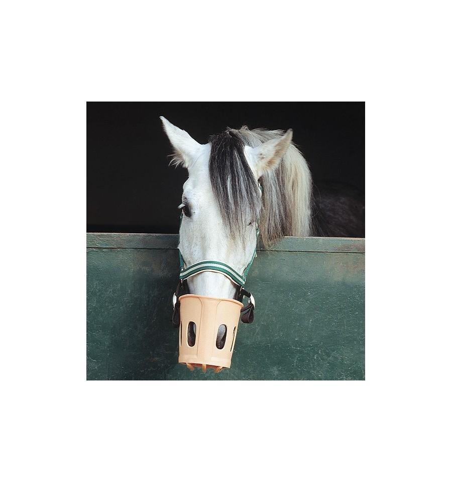 Bozal para caballo con correas