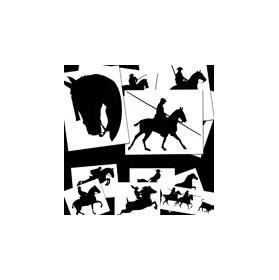 Chaquetas de doma vaquera