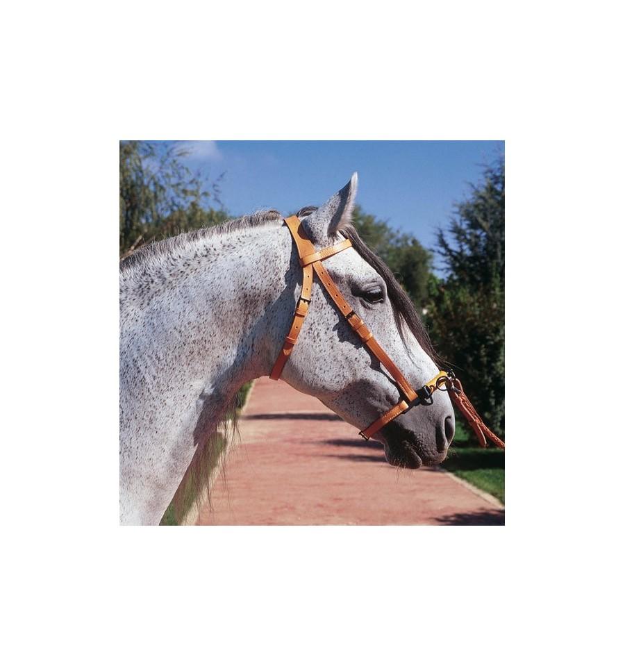 Cabezada para caballo Doma Marjomán Serretón 3 pilares