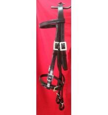 Portuguese bridle squared buckles