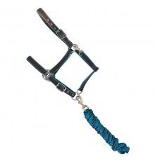 Nylon Halter with rope