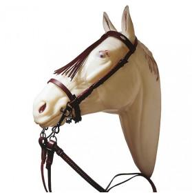 Cabezada vaquera para pony con riendas