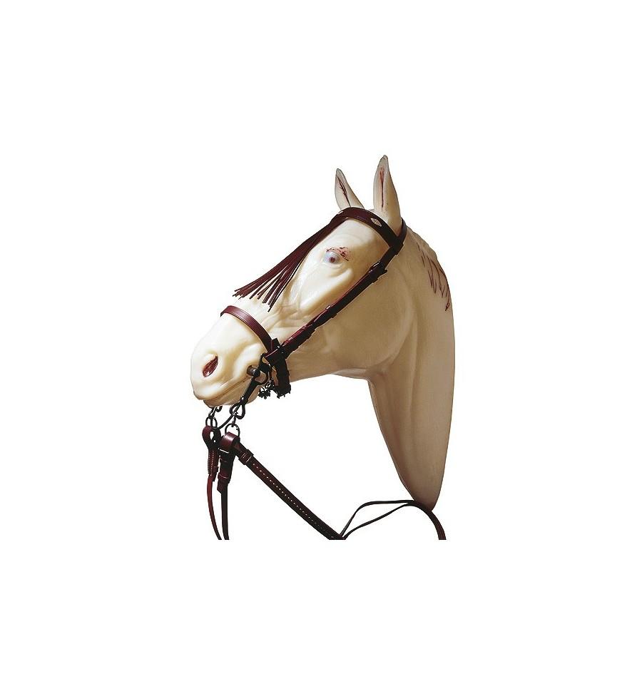 Cabezada para pony con riendas