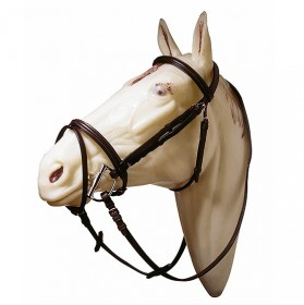 Raised and padded bridle with flash noseband