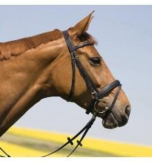 Cabezada de pony Kieffer Anastasia