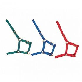 Cabezada de nylon para potro 3 hebillas