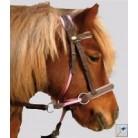 Cabezadas para pony