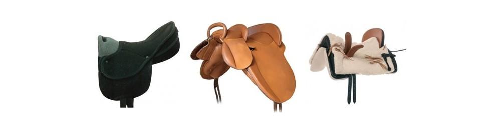 Special Saddles
